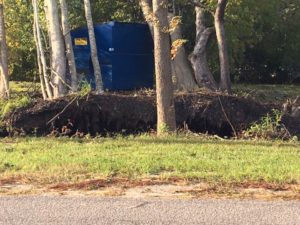 Arctic Air - Trees Uprooted - Summerville SC